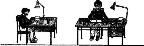 Упражнения для укрепления спины и поясницы в домашних условиях 847